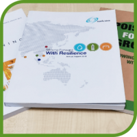 Seamless and Cost-effective Eco Technical Print Solutions