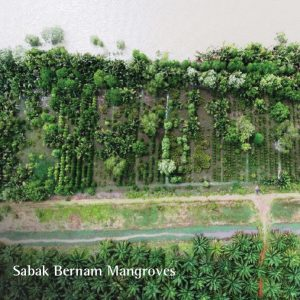The Tree Planting Sites by Global Environmental Centre (GEC)_3